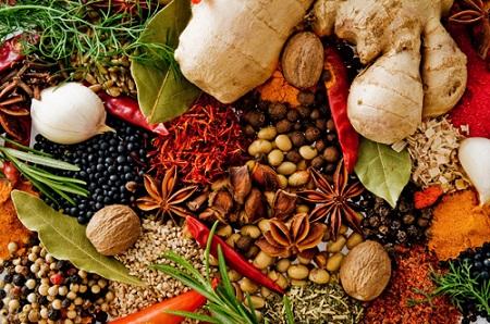 Những thảo dược trong điều trị đau cột sống như: gừng, nghệ, húng quế,…và các loại thảo dược khác