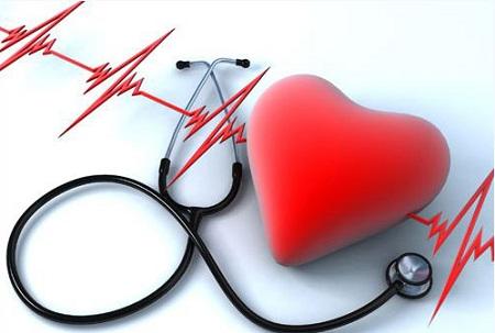 Nhịp tim biến đổi trong một ngày tùy thuộc vào mức độ hoạt động của cơ thể và là biểu hiện cho sức khỏe của cơ thể