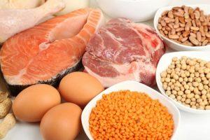 Top các thực phẩm giàu protein mà bạn nên biết